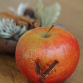 """Ein beschädigter Apfel, die braune Stelle ähnelt einem """"V"""""""