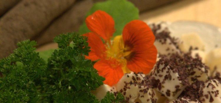 gestückelte Schwarzwurzel, dekoriert mit Petersilie, eine Blüte der Kapuzinerkresse und Algenflocken