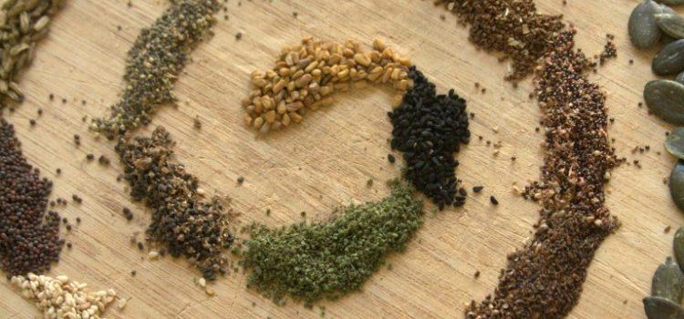 Ein rundes Holzbrett mit verschiedenen Samen in einer Spirale angeordnet