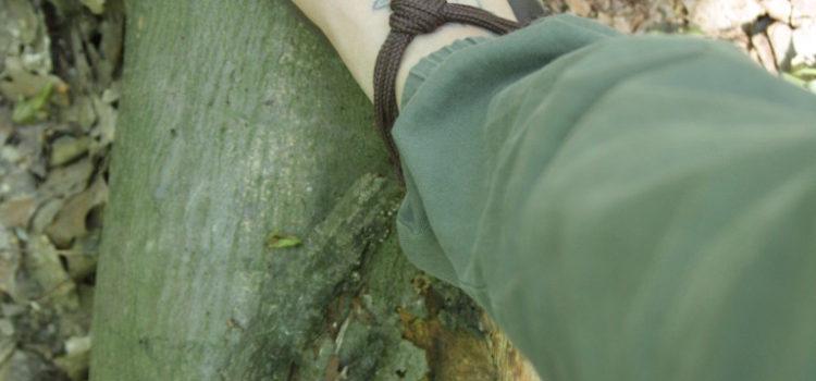 Zwei Füße in Barfuß-Sandalen stehen auf einem Baumstamm