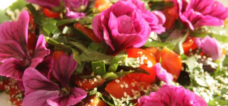 Ein Salat mit Blättern und Blüten auf einem Teller